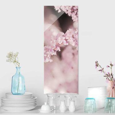 Quadro in vetro - Fiori di ciliegio nella luce viola
