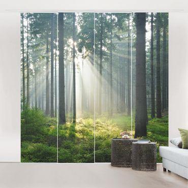 Tende scorrevoli set - Enlightened Forest