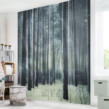 Tende scorrevoli set - Mystic Winter Forest