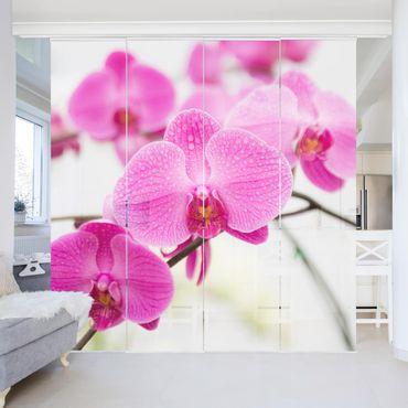 Tende scorrevoli set - Close Orchid