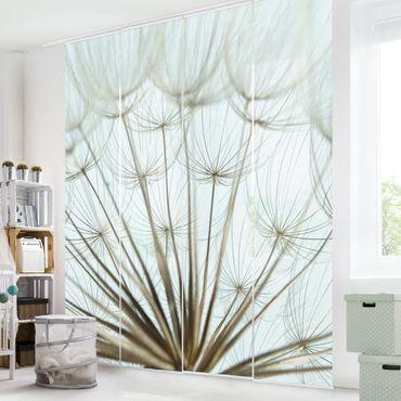 Tende scorrevoli set - Beautiful Dandelion Macro Shot