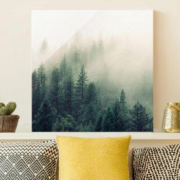 Quadro in vetro - Foresta nebbiosa al risveglio