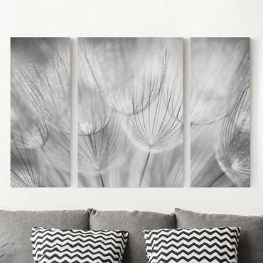 Stampa su tela 3 parti - Dandelions Macro Shot In Black And White - Trittico