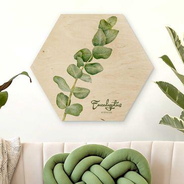 Esagono in legno - Acquerello Botanica Eucalyptus