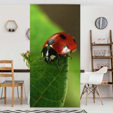 Tenda a pannello Ladybird 250x120cm
