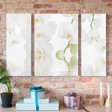 Stampa su tela 3 parti - Wellness Orchid - White Orchid - Trittico