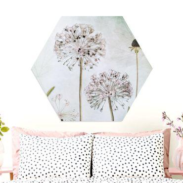Esagono in forex - Porro Flowers In pastello