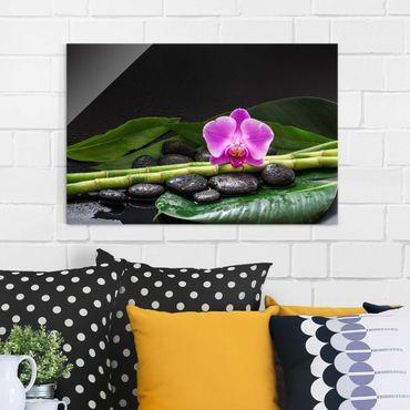 Quadro in vetro - Green Bamboo Con L'orchidea Blossom - Orizzontale 2:3
