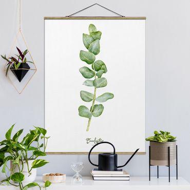 Foto su tessuto da parete con bastone - Acquerello Botanica Eucalyptus - Verticale 4:3