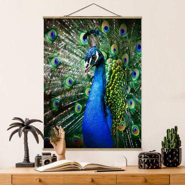 Foto su tessuto da parete con bastone - Peacock Noble - Verticale 4:3