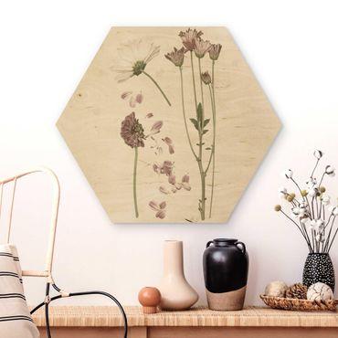 Esagono in legno - Herbarium In Pink II