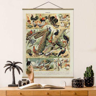 Foto su tessuto da parete con bastone - Uccelli d'epoca Consiglio europeo - Verticale 4:3