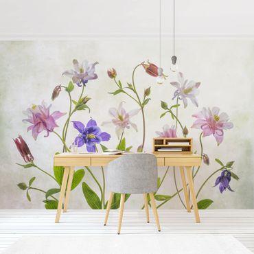 Carta da parati adesiva floreale - Mazzo di aquilegia
