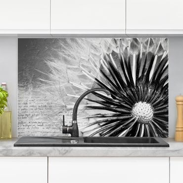 Paraschizzi in vetro - Dandelion Black & White - Orizzontale 2:3
