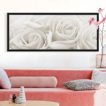 Poster con cornice - Rose Bianche - Panorama formato orizzontale