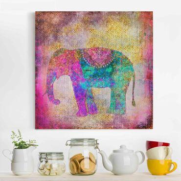 Stampa su tela - Colorato collage - Elefante indiano - Quadrato 1:1