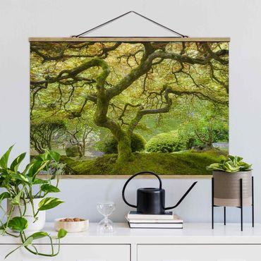 Foto su tessuto da parete con bastone - Verde Giardino Giapponese - Orizzontale 2:3