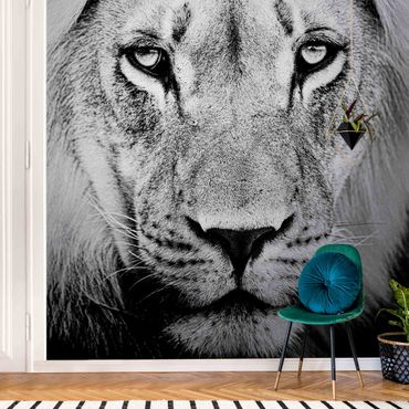 Carta da parati metallizzata - Vecchio leone