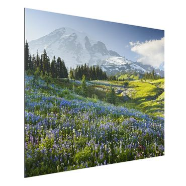 Quadro in alluminio - Mountain meadow with flowers in front of Mt. Rainier