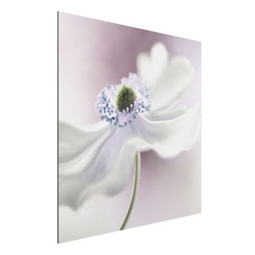 Quadro in alluminio - Anemones Breeze