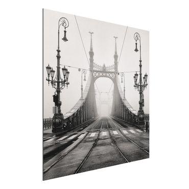 Quadro in alluminio - Ponte a Budapest