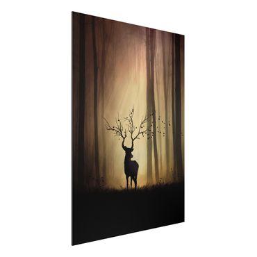 Quadro in alluminio - Il Signore della Foresta