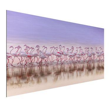 Quadro in alluminio - Flamingo partito
