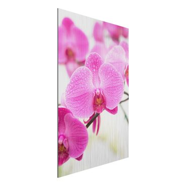 Quadro in alluminio - Close orchid