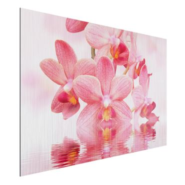 Quadro in alluminio - Pink Orchid on water