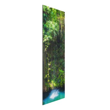 Quadro in alluminio - Hanging roots of Ik-Kil Cenote