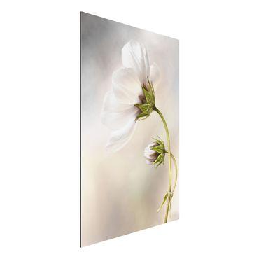 Quadro in alluminio - sogno floreale divino