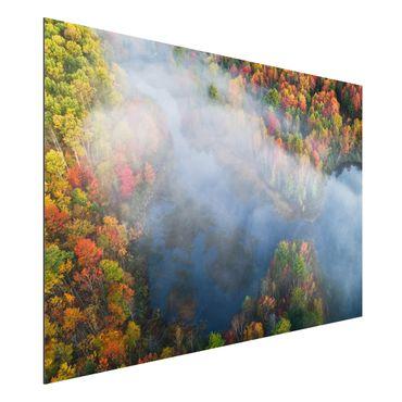 Quadro in alluminio - Veduta aerea - Sinfonia d'autunno