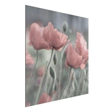 Quadro in alluminio - Picturesque Poppies
