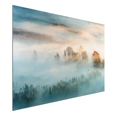 Quadro in alluminio - Fog At Sunrise