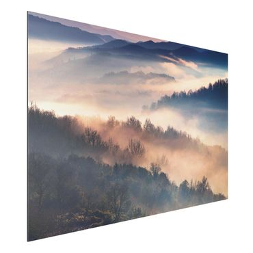 Quadro in alluminio - Fog At Sunset