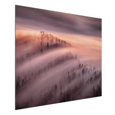 Quadro in alluminio - Nebbia Flood