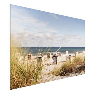 Quadro in alluminio - Baltic Sea And Beach Chairs