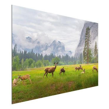 Quadro in alluminio - Deer In The Mountains