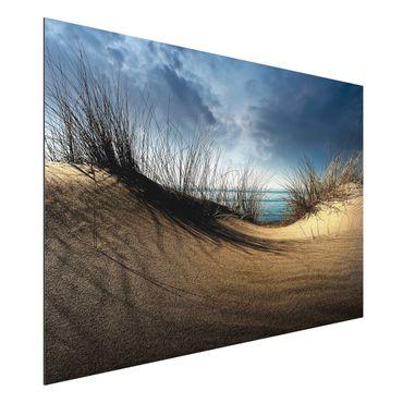 Quadro in alluminio - duna di sabbia