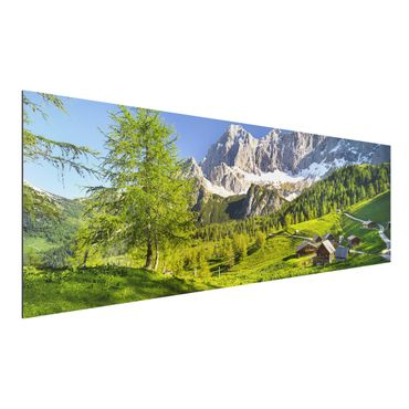 Quadro in alluminio - Styria Alpine meadow