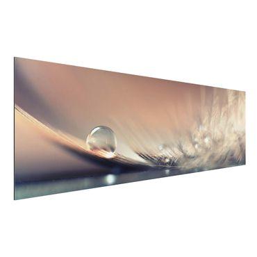 Quadro in alluminio - Story Of A Water Drop
