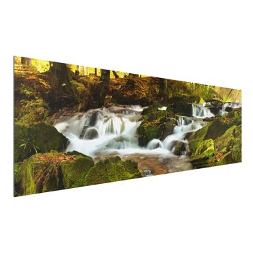 Quadro in alluminio - Waterfall autumnal forest