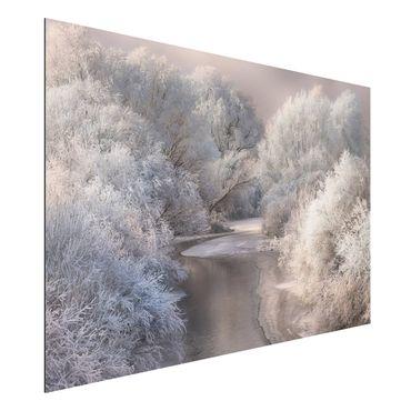Quadro in alluminio - canzone d'inverno
