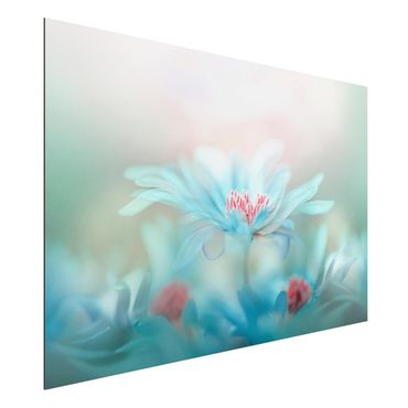 Quadro in alluminio - Delicate Flowers In Pastel