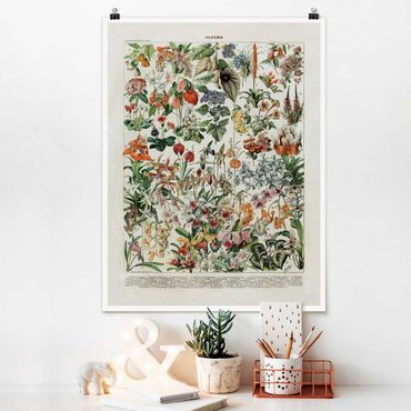 Poster - Vintage Consiglio Flowers III - Verticale 4:3
