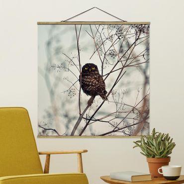 Foto su tessuto da parete con bastone - Gufo in inverno - Quadrato 1:1