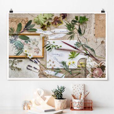 Poster - Fiori E Garden Erbe Vintage - Orizzontale 2:3