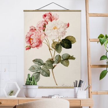 Foto su tessuto da parete con bastone - Pierre Joseph Redoute - Rosa Damascena - Verticale 4:3