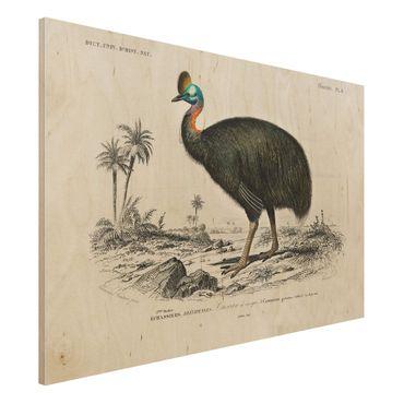 Stampa su legno - Vintage Consiglio Emu - Orizzontale 2:3