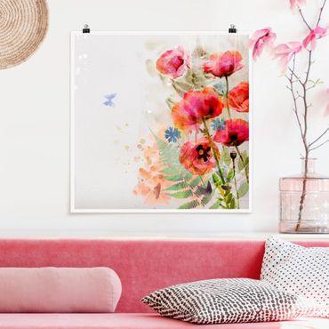 Poster - Acquerello fiori di papavero - Quadrato 1:1